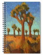 Afternoon Light At Joshua Tree Spiral Notebook