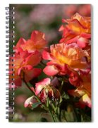 Afternoon Roses Spiral Notebook