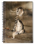 Against The Wall Spiral Notebook