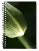 Agapanthus Green Spiral Notebook