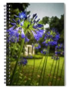 Agapanthus In The Garden Spiral Notebook