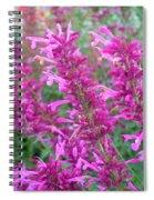 Agastache Canna Spiral Notebook