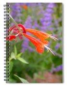 Agastache Coronado Spiral Notebook