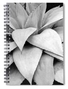 Agave Detail Spiral Notebook