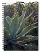 Agave Spiral Notebook