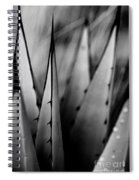 Agave Plant Spiral Notebook
