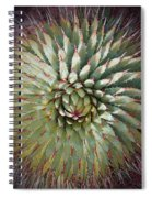 Agave Spikes Spiral Notebook