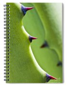 Agave Study Spiral Notebook