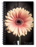 Aster Flower Spiral Notebook