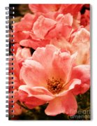 Aged Rose  Spiral Notebook