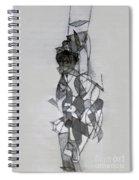 Self-renewal 11 Spiral Notebook
