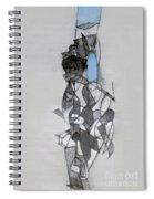 Self-renewal 11a Spiral Notebook