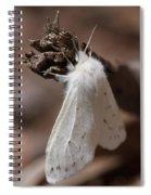 Agreeable Tiger Moth Spiral Notebook