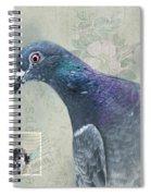 Air Mail Spiral Notebook