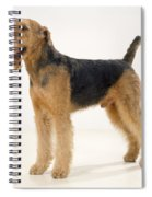Airedale Terrier Dog Spiral Notebook