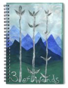 Airy Three Of Wands Spiral Notebook
