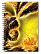Aisha 2 Spiral Notebook