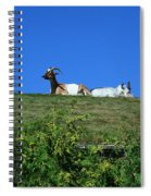 Al Johnsons Resturant Goats Spiral Notebook
