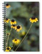 Alabama Black Eyed Susan Wildflowers Spiral Notebook