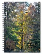 Alabama Forest In Autumn 2012 Spiral Notebook