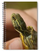 Alabama Red-bellied Turtle -  Pseudemys Alabamensis Spiral Notebook