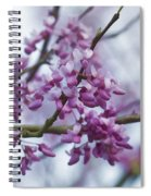 Alabama Redbuds Spiral Notebook