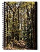 Alabama Woodlands In Spring 2013 Spiral Notebook