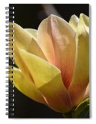 Alabama's Tulip Magnolia Spiral Notebook