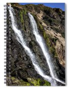 Alamere Falls Two Spiral Notebook
