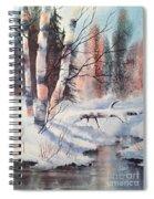 Alaska Birch II Spiral Notebook