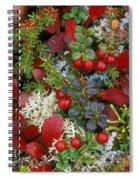 Alaskan Berries 2 Spiral Notebook