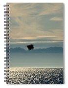Alaskan Eagle At Sunset Spiral Notebook