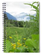 Alaskan Glacier Beauty Spiral Notebook