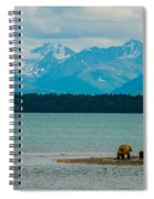 Alaskan Grizzly And Spring Cub Spiral Notebook
