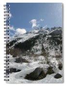 Alaskan Mountain Spiral Notebook