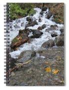 Alaskan Waterfall Spiral Notebook