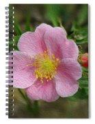 Alberta's Wild Rose Spiral Notebook