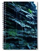 Albion Waterfalls 3 Spiral Notebook