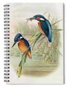 Alcedo Ispida Plate From The Birds Of Great Britain By John Gould Spiral Notebook