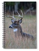 Alert Buck Spiral Notebook
