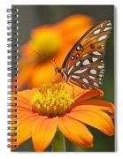 All About Orange 3236 3 Spiral Notebook