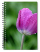 All By Myself Spiral Notebook