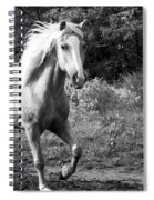 All Charm Spiral Notebook