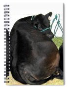 All Eyes Front Spiral Notebook