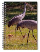 All Family Spiral Notebook