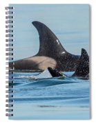 All In The Family Spiral Notebook