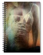 All Men Are Liars Spiral Notebook