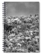 All Out Gallop Spiral Notebook