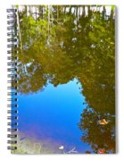 All Pond Treeflections Spiral Notebook