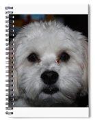 All Star Yoshi Spiral Notebook
